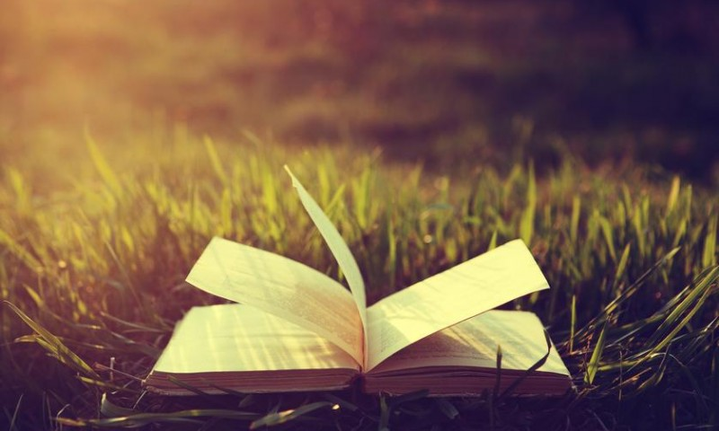 Picknickbücher - Kochbücher Bestseller