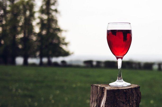 Wein zum Picknick